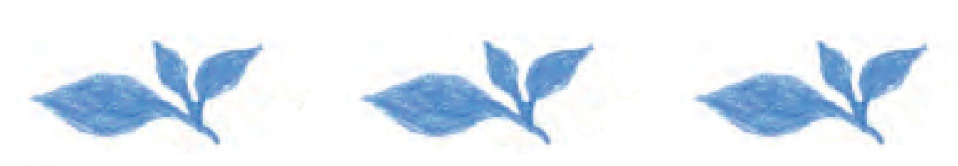 青い植物3連